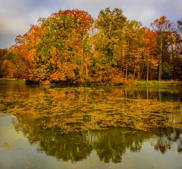 Where To Photograph The Fall Colors In Cuyahoga Valley