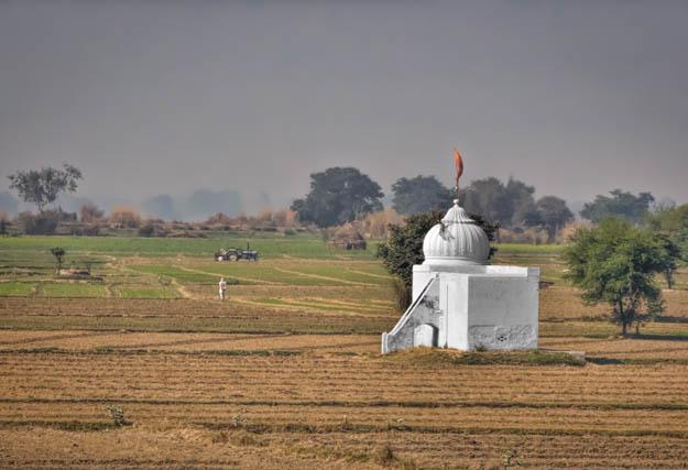 Temple in the Farm Field - India