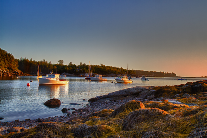 Seal Cove, Maine