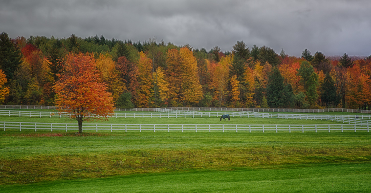 Vermont Horse Farm with Fall Colors