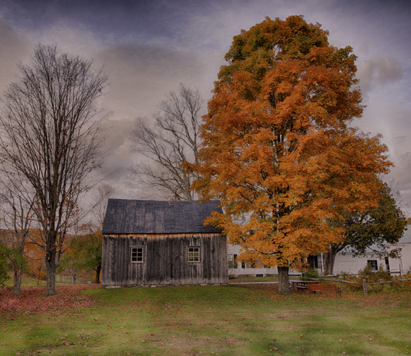 Barn in the Fall, Plymouth Notch Vermont