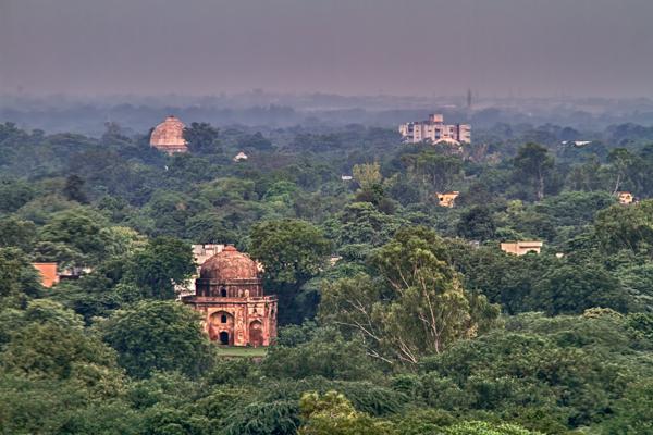 Foggy New Delhi Morning