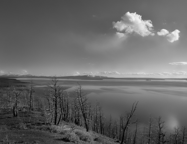 Yellowstone Lake Butte Overlook - Black and White