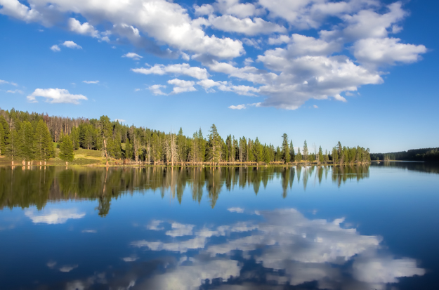 Reflections in the Yellowstone River