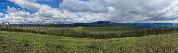 Dunraven Pass iPhone Pano, Yellowstone