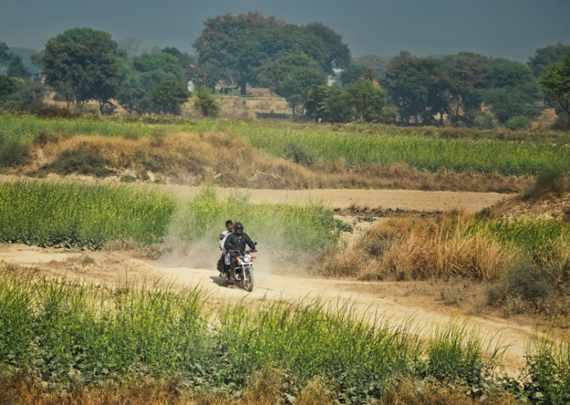 Biking through the Mustard Fields, India