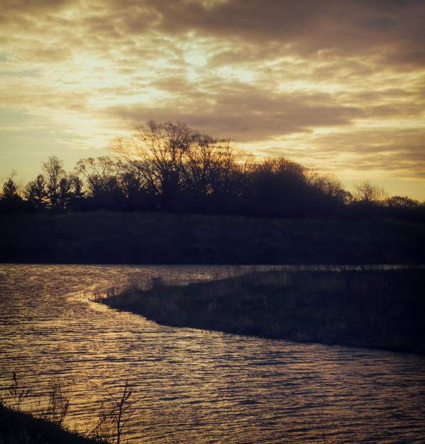 Independence Grove Sunrise