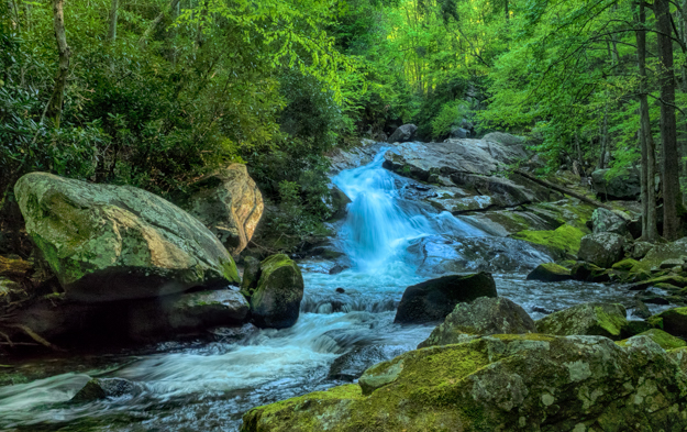 Lower Lynn Camp Falls, Smoky Mountains
