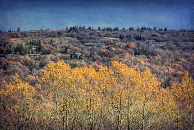 Autumn in the Canaan Valley, West Virginia