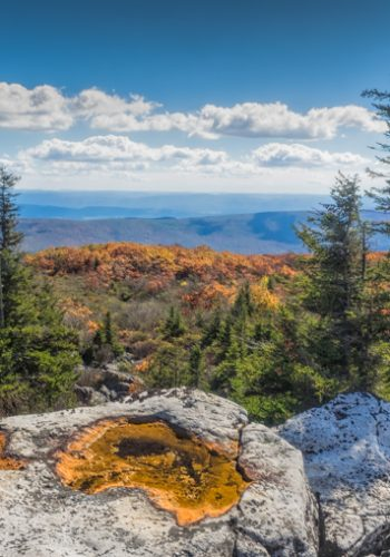 Bear Rocks in Dolly Sods Wilderness