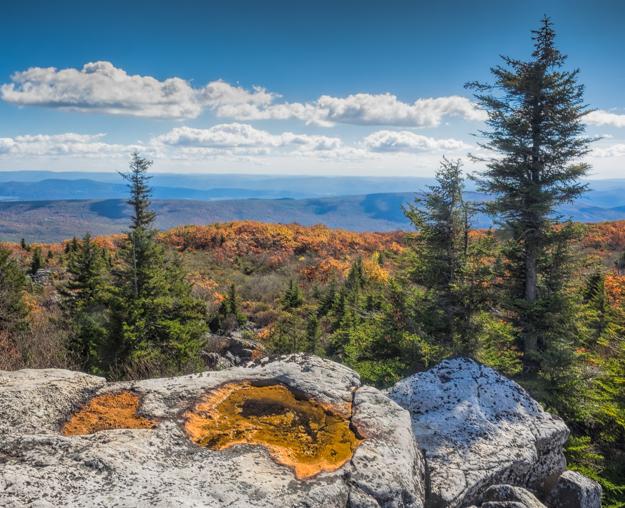 Bear Rocks in Dolly Sods Wilderness