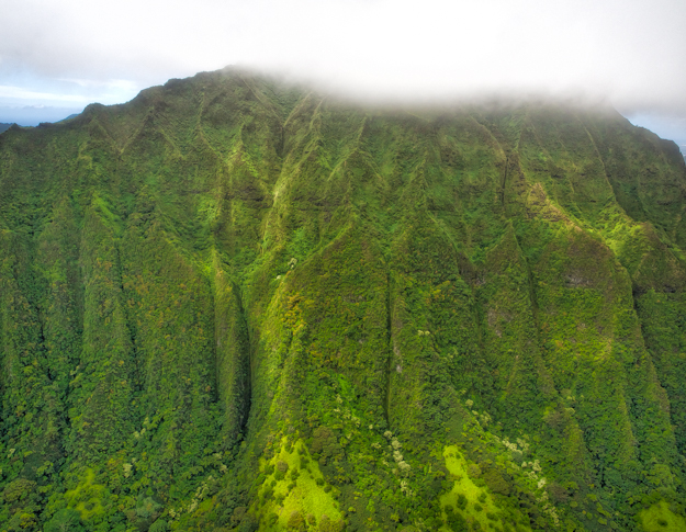 Foggy Green Mountain, Oahu
