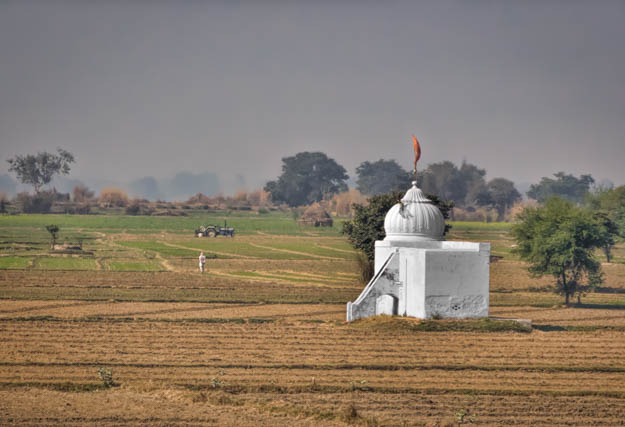 Temple in the Farm Field - India