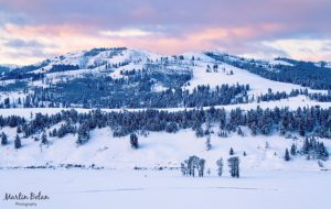 Winter in Lamar Valley, Yellowstone National Park