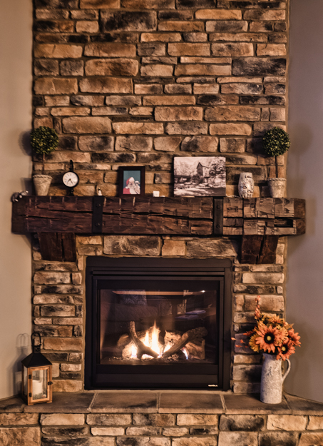 OM-D E-M1X Handheld Internal HDR Fireplace