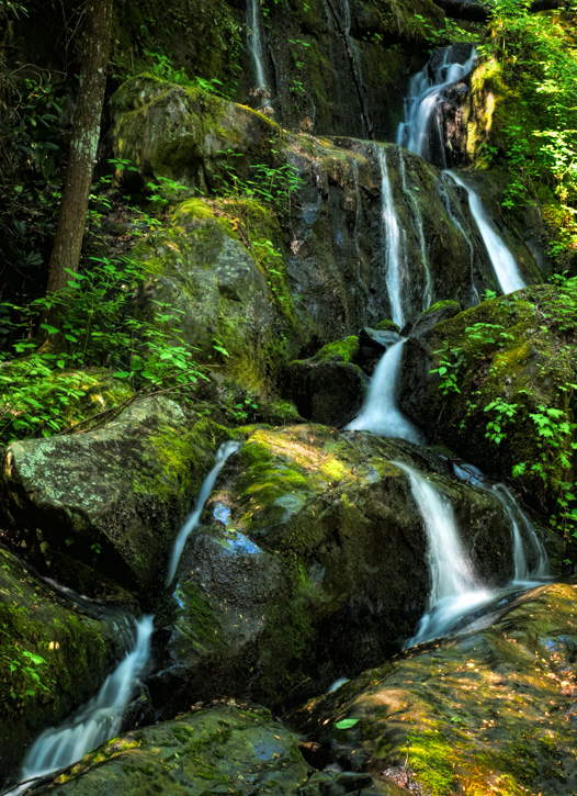 Place of a Thousand Drips, Smoky Mountains - Before