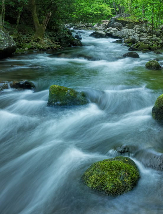 Rapids Along Tremont Road, Smoky Mountains - Before