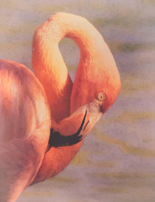Flamingo Art created with Topaz Studio AI