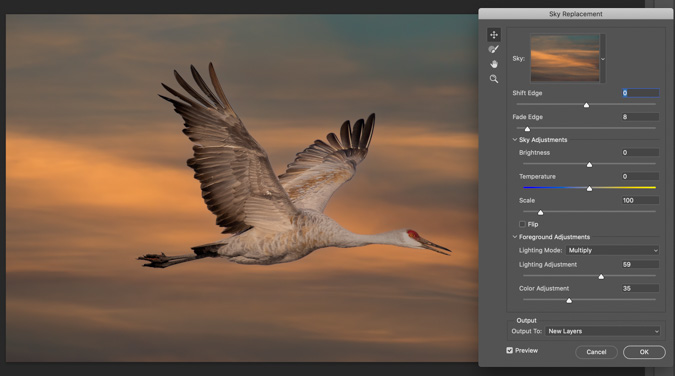 Sandhill Crane Sunset Sky Replacement