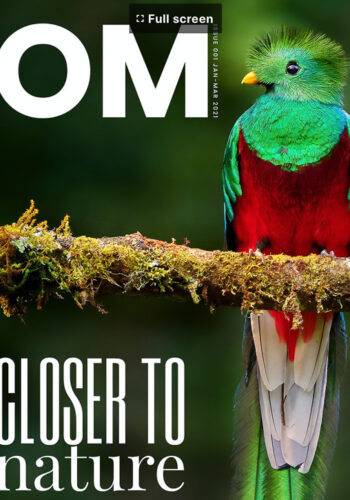 OM Digital Solutions Magazine