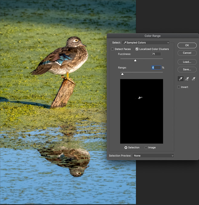 Select Color Range Tool in Photoshop