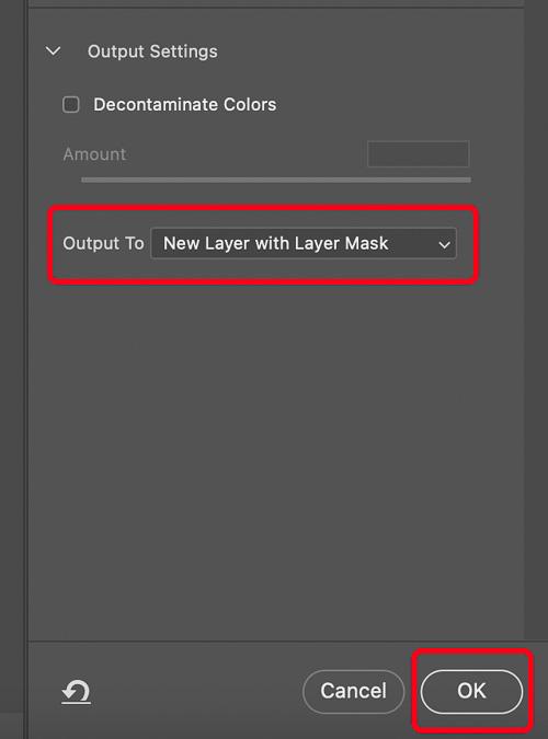 Select and Mask Output Settings