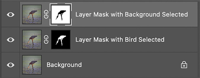 Layer Masks with Bird and Background Selected