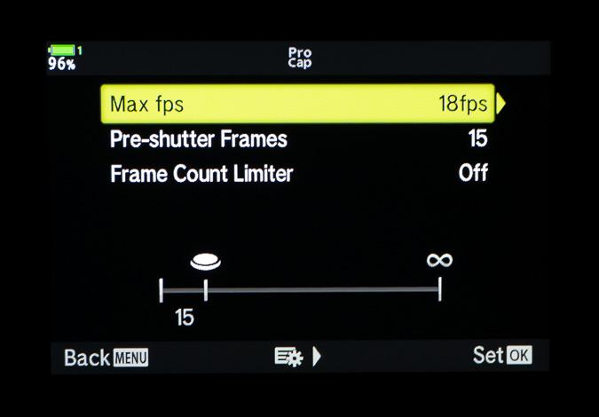 Pro Capture Low Settings